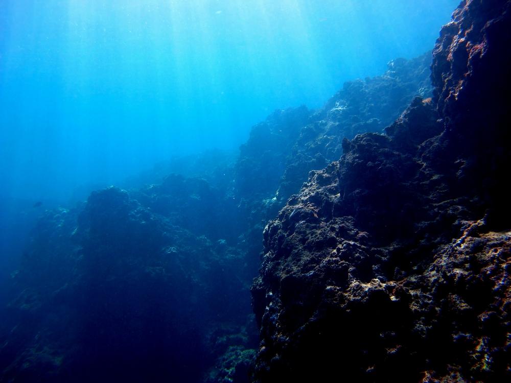 水中から見える太陽光