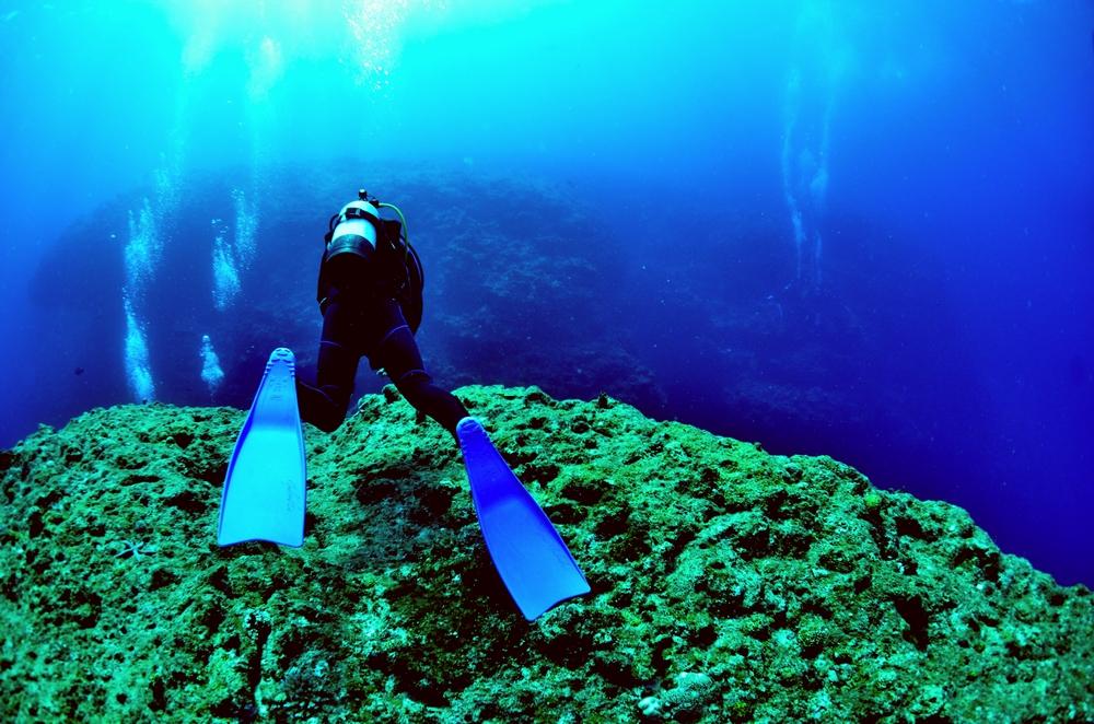 沖縄 ダイビングの求人情報