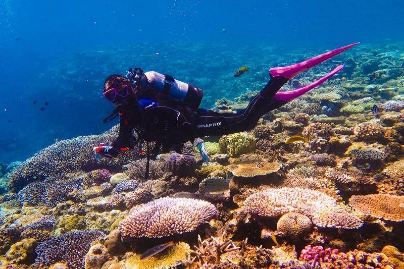 珊瑚礁と女性ダイバー