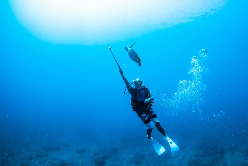 海亀をGoProで撮影するダイバー