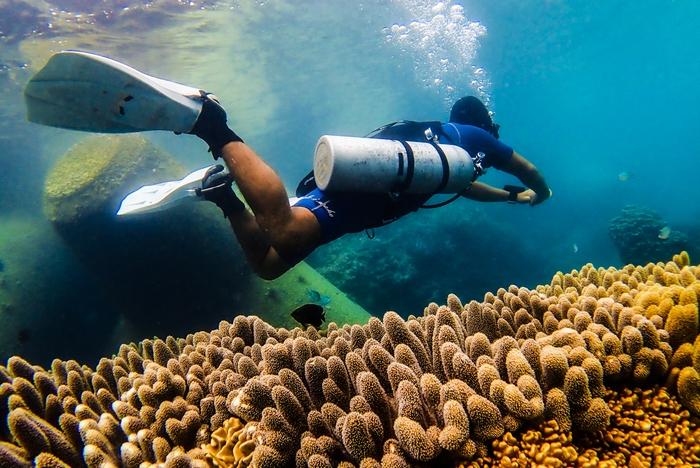 サイドマウントダイバーと珊瑚礁