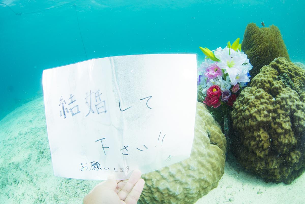 水中プロポーズ・結婚して下さい!!