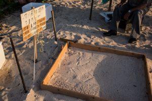 2018年7月18日 シークレットビーチ・海亀の孵化
