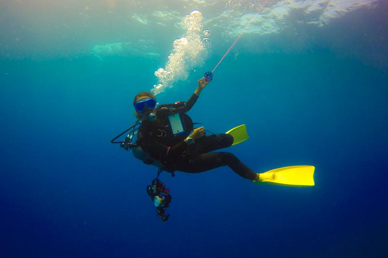 古宇利島の調査ダイビング②・Gopro(ゴープロ)の水中写真