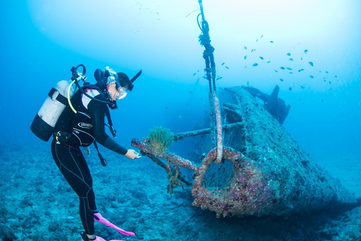 沈没船の全景と人物 エモンズ・USS EMMONS