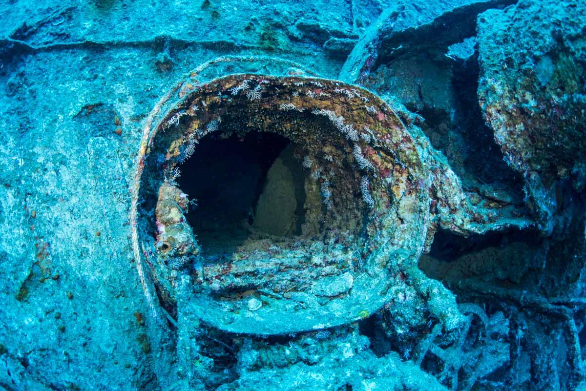 第二次世界大戦の沈没船・エモンズの内部通路の扉②