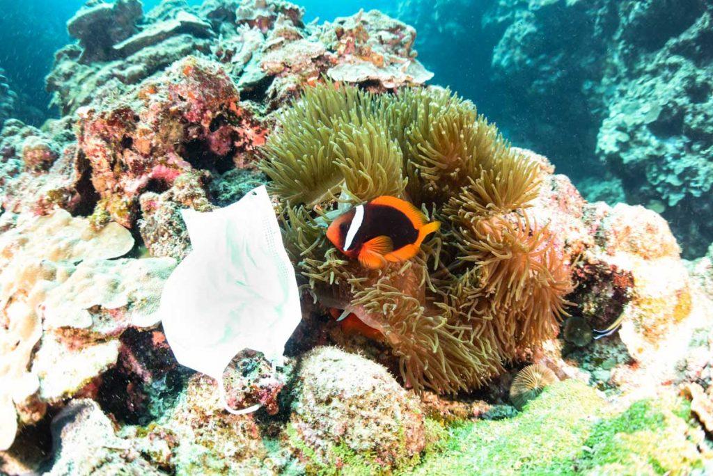 不織布マスクと沖縄の海